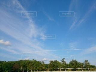 空,屋外,雲,晴れ,青空,樹木,飛行機雲,日中,クラウド
