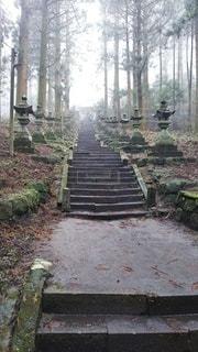 階段,幻想,灯籠