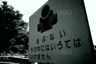ダチョウ倶楽部の写真・画像素材[3344340]