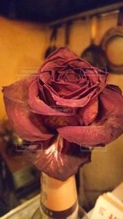 花,屋内,赤,一輪,バラ,薔薇,一輪挿し