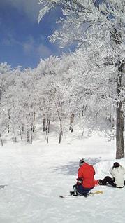 雪 - No.342771