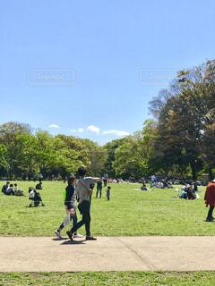 公園 - No.453084