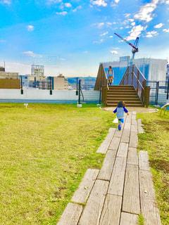 緑の草の多くに満ちて港の写真・画像素材[723151]