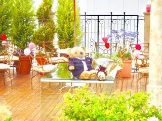 庭でディスプレイ上のぬいぐるみの動物のグループの写真・画像素材[783462]
