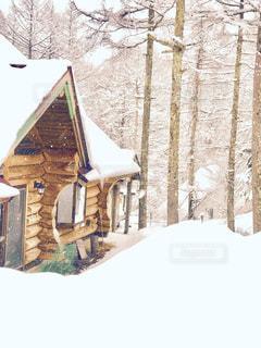 雪の中のロッヂの写真・画像素材[909004]