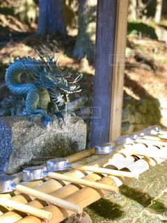 神社の手水の写真・画像素材[963546]