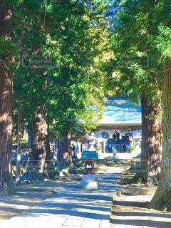 河口浅間神社へ初詣 - No.963962