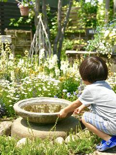 庭で遊ぶ子の写真・画像素材[1158259]