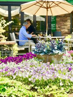 ガーデンテラスで花に囲まれてランチの写真・画像素材[1367727]