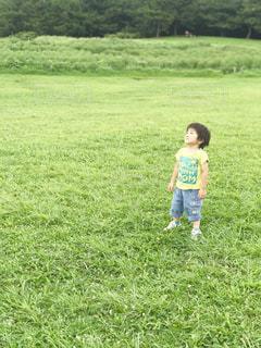 緑豊かな野原で空を見上げる小さな男の子の写真・画像素材[2096058]