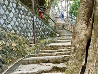 高尾山に登る階段の写真・画像素材[2147044]