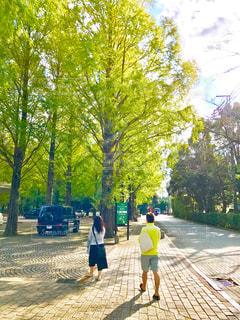 樹々の間から差し込む朝の優しい日差しの中をお散歩の写真・画像素材[2260149]