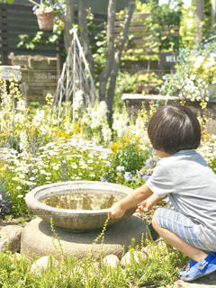 庭の花と遊ぶ子どもの写真・画像素材[3030211]