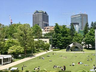 高層ビルの並ぶ東京ミッドタウンにも、気持ちの良い緑の公園がありました。の写真・画像素材[3139913]