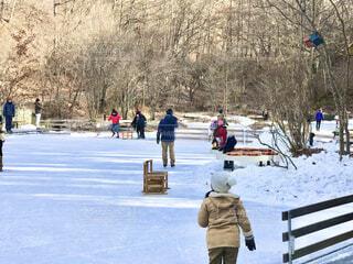 風景,冬,雪,屋外,樹木,運動,ウィンタースポーツ,スケート,スケートリンク