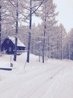 雪に覆われた別荘地の写真・画像素材[4139920]