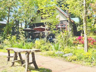 樹々に囲まれた古民家の庭でひとときの休息の写真・画像素材[4333891]