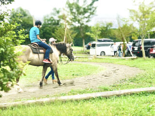 乗馬体験の写真・画像素材[4430284]