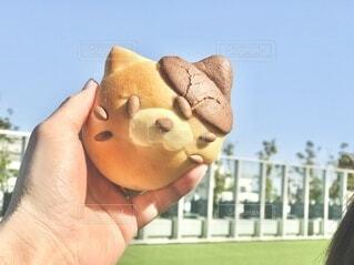 食べるのが忍びなくなる、可愛いクリームパンの写真・画像素材[4860389]