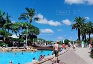 5人以上,空,屋外,ビーチ,プール,砂浜,海岸,日差し,泳ぐ,ヤシの木,リゾート,常夏,日中
