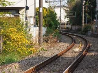 のどかな線路の春の写真・画像素材[3099102]