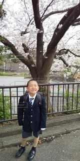 風景,桜,笑顔,ポーズ,少年,1年生