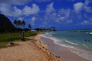 自然,風景,海,空,ビーチ,砂浜,水面,海岸,樹木,ヤシの木,日中