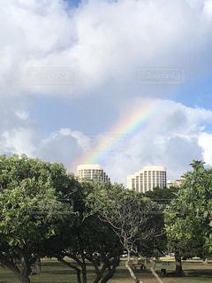 空,屋外,虹,レインボー,旅行,ハワイ,ホノルル