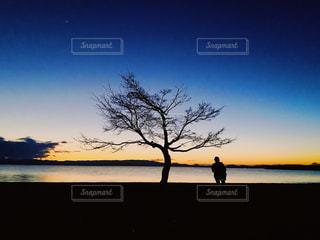自然,風景,空,木,屋外,湖,ビーチ,夕暮れ,水面,海岸,グラデーション,眺め,エモい