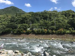 自然,屋外,川,水面