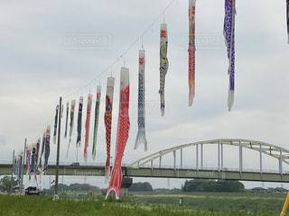 自然,空,橋,鯉のぼり,日中,長い