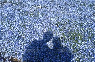 お花でツーショットの写真・画像素材[3080350]