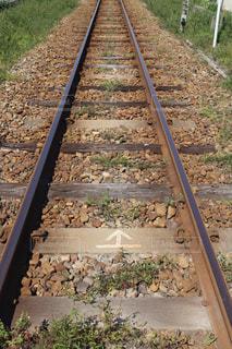 線路の写真・画像素材[3132175]