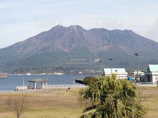 桜島眺望の写真・画像素材[3096846]