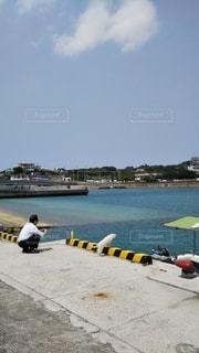 海を眺める猫とおじさんの写真・画像素材[3093293]