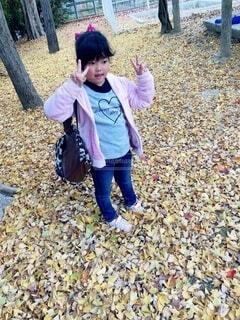 黄色い落ち葉のじゅうたん✩の写真・画像素材[3715886]