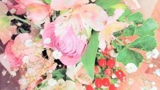 花のクローズアップの写真・画像素材[3106234]
