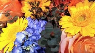 ビタミンカラーの花束の写真・画像素材[3110729]