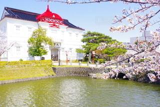 鶴岡公園の写真・画像素材[3120004]