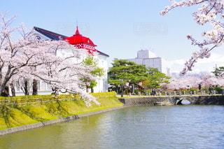 鶴岡公園の写真・画像素材[3120006]