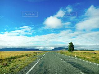 大草原の道の写真・画像素材[3113515]