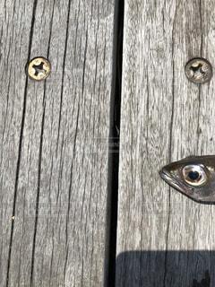 どれがサカナの目でしょうかの写真・画像素材[3115412]