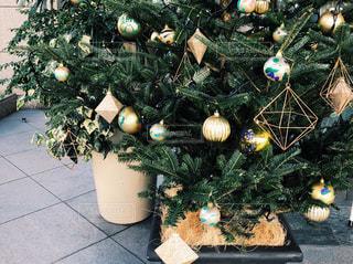 冬,クリスマス,渋谷,クリスマスツリー,iPhone8で撮影,桜ヶ丘