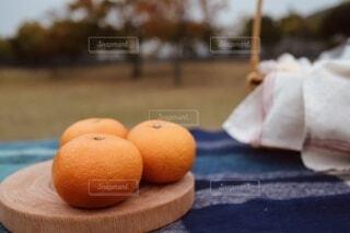 みかんでピクニックの写真・画像素材[3910947]