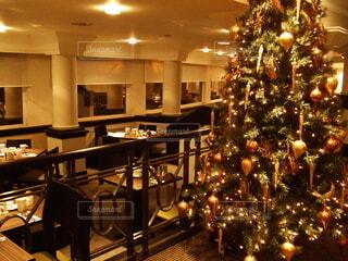 イギリスのレストランとクリスマスツリーの写真・画像素材[3984300]