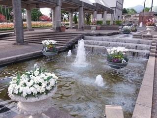 噴水と花の写真・画像素材[3571776]