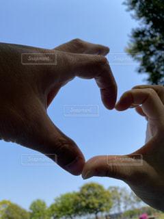 恋人,自然,空,屋外,青,手,池,草,樹木,ハート,新緑,人,グリーン