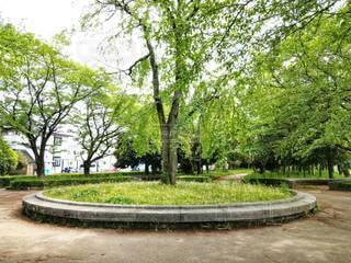 公園の木の写真・画像素材[3158949]