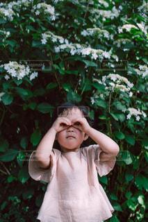 おてての双眼鏡の写真・画像素材[4616012]