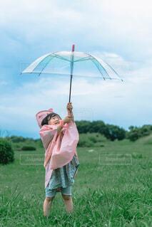 雨の日の写真・画像素材[4616017]